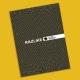 Пројекат Разлике 2011