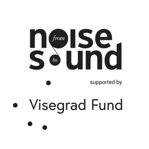 FNTS logo mali